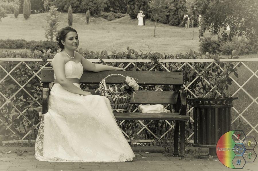 Свадебная фотосъемка недорого в Минске 26